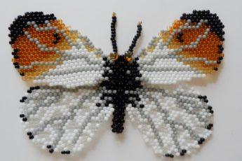 """Бабочка """"Зорька"""" своими руками"""